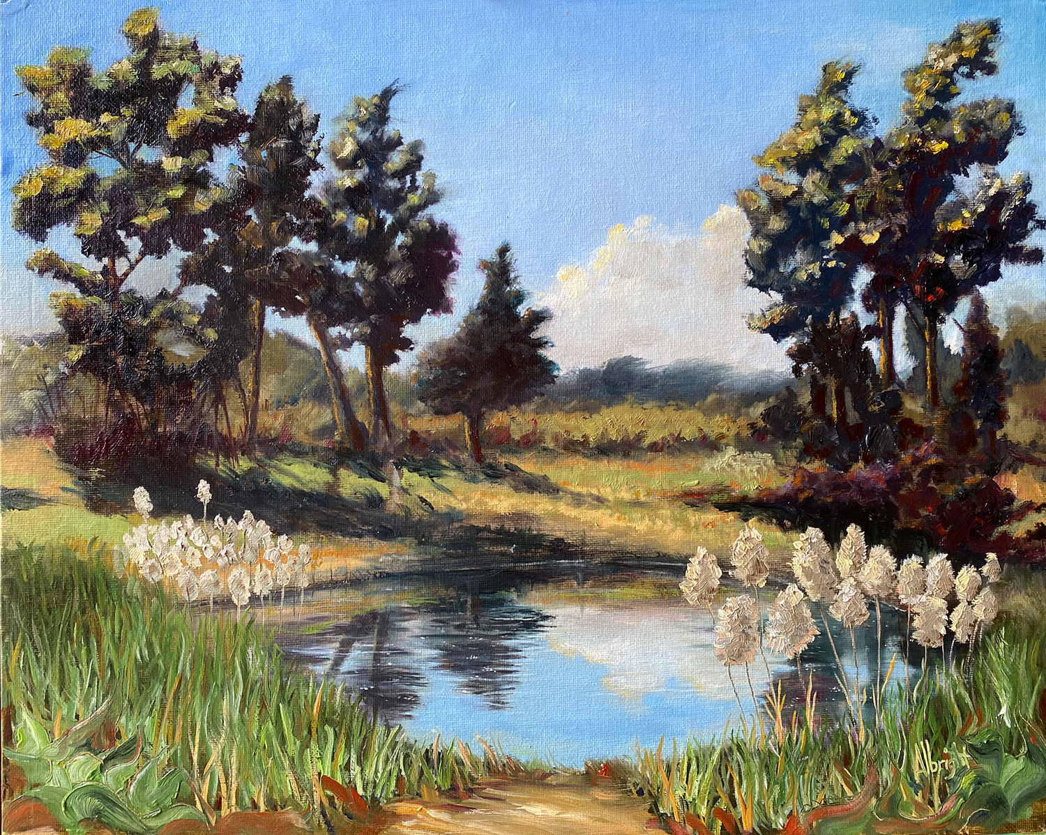 Sam Albright, Pine Pond