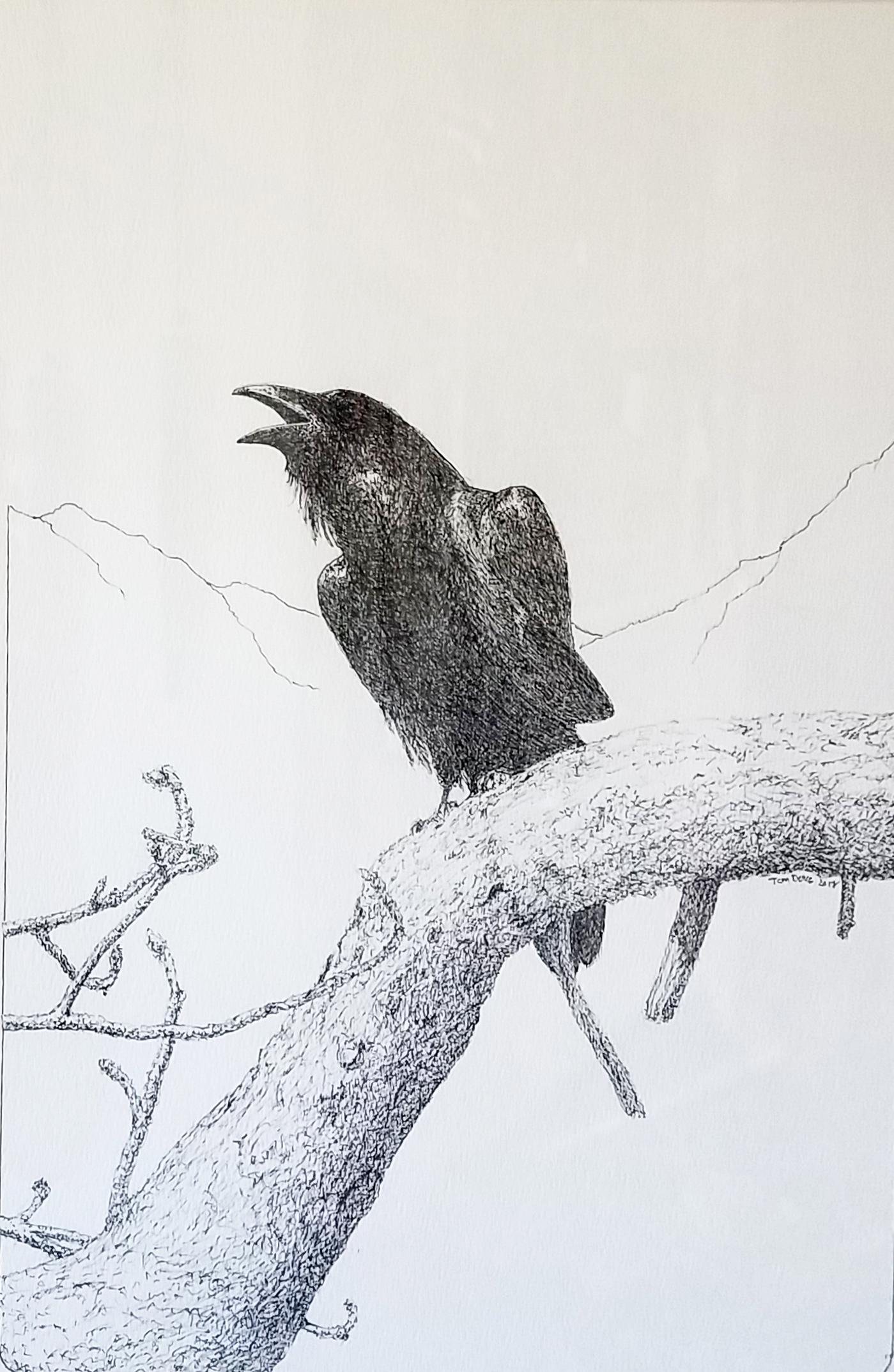 Tom Duke, Black Bird Speaks